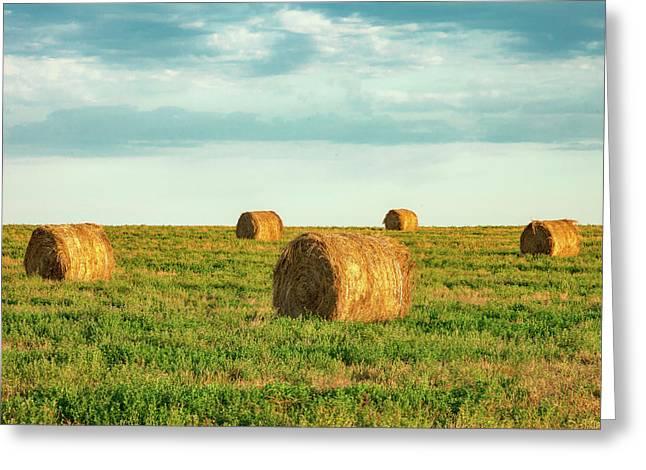 Round Hay Bales Greeting Card by Todd Klassy
