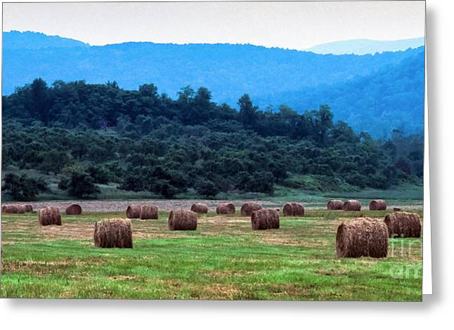Round Hay Bales, Virginia Greeting Card by Thomas R Fletcher