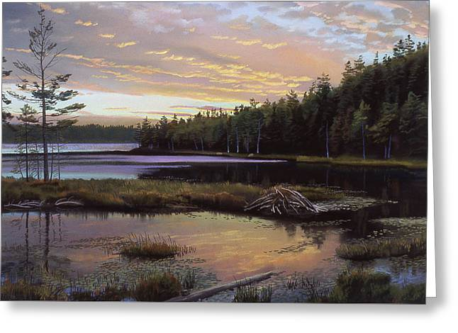 Round Pond Greeting Card by Art Chartow