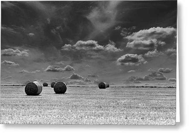 Round Straw Bales Landscape Greeting Card