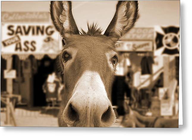 Route 66 - Oatman Donkeys Greeting Card