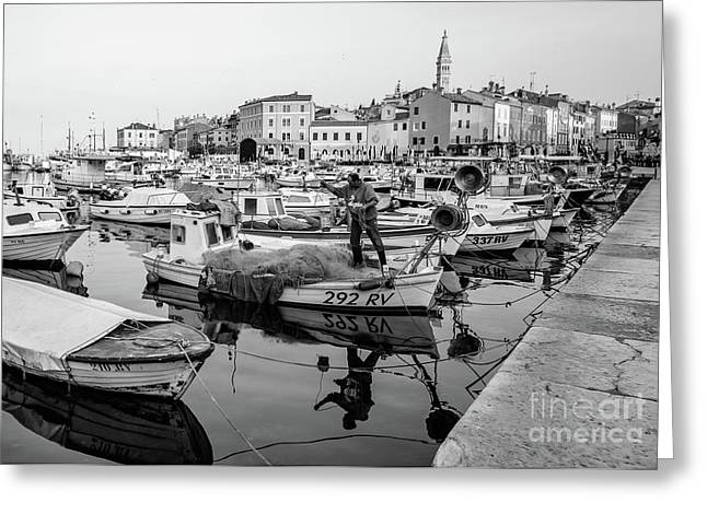 Rovinj Fisherman Working In Old Town Harbor - Rovinj, Istria, Croatia Greeting Card