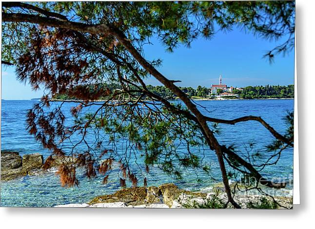 Rovinj Old Town Accross The Adriatic Through The Trees Greeting Card
