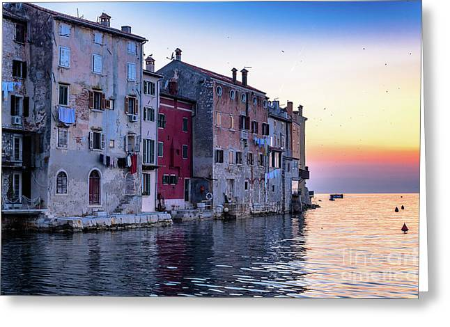 Rovinj Old Town On The Adriatic At Sunset Greeting Card