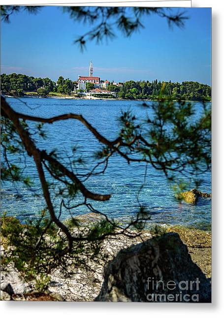 Rovinj Seaside Through The Adriatic Trees, Istria, Croatia Greeting Card