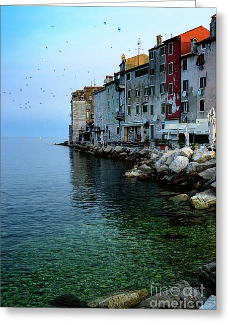 Rovinj Venetian Buildings And Adriatic Sea, Istria, Croatia Greeting Card