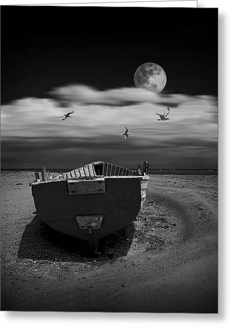 Row Boat On A Sandy Beach In Biscayne Bay Florida With Flying Gulls Under The Moon  Greeting Card