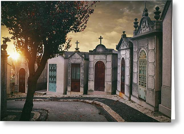 Greeting Card featuring the photograph Row Of Crypts by Carlos Caetano