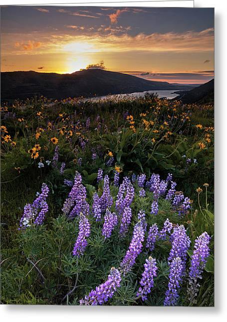 Greeting Card featuring the photograph Rowena  Dawn by Mike Lang