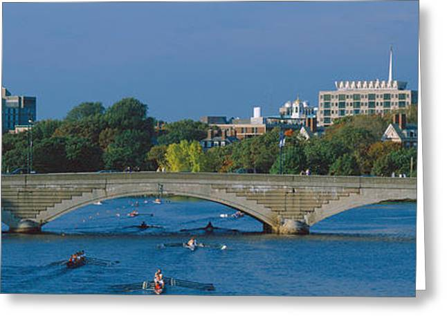 Head Of State Greeting Cards - Rowers On Charles River, Harvard Greeting Card by Panoramic Images