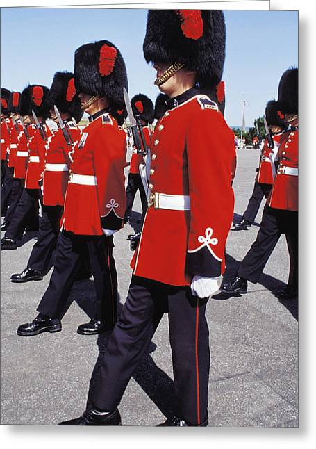 Royal Guards In Ottawa Greeting Card by Carl Purcell