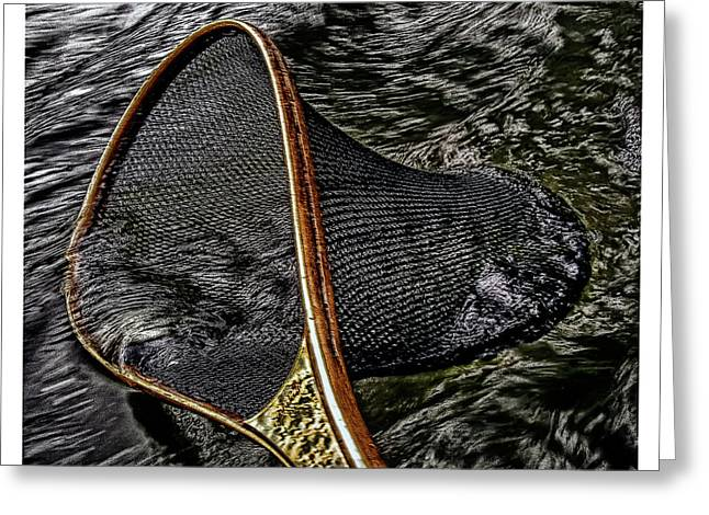 Greeting Card featuring the photograph Royal Net by Richard Bean