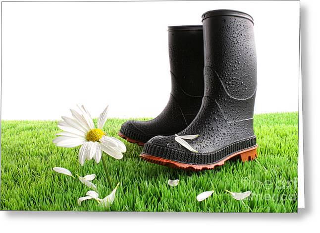 Rubber Boots With Daisy In Grass Greeting Card by Sandra Cunningham