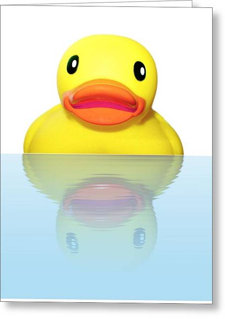 Rubber Ducky Greeting Card by Karen Wallace