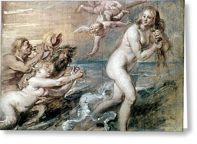 Rubens: Venus Greeting Card