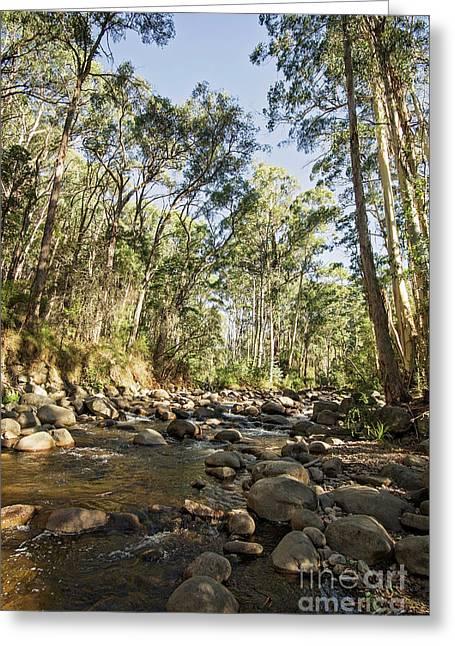 Rubicon River Greeting Card