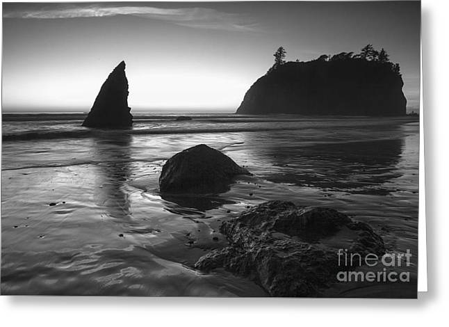 Ruby Beach  Greeting Card by Timothy Johnson