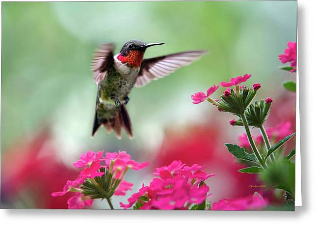 Ruby Garden Jewel Greeting Card by Christina Rollo