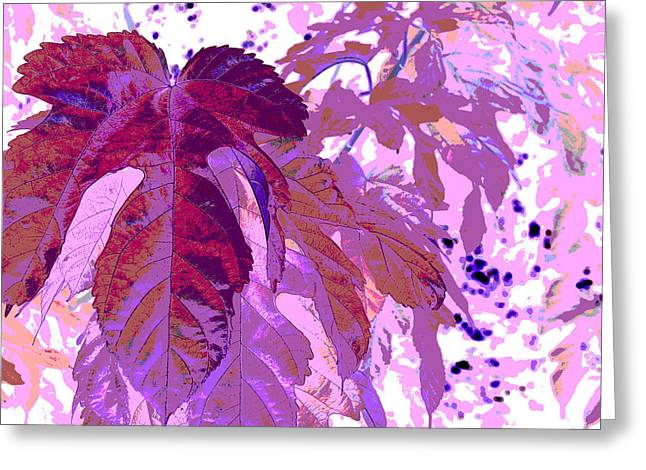 Ruby Leaves Greeting Card by Richard Coletti
