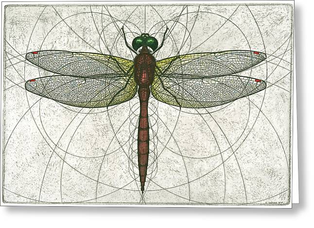 Nature Study Greeting Cards - Ruby Meadowhawk Dragonfly Greeting Card by Charles Harden