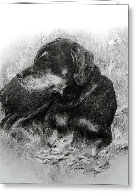 Greeting Card featuring the drawing Ruby by Meagan  Visser