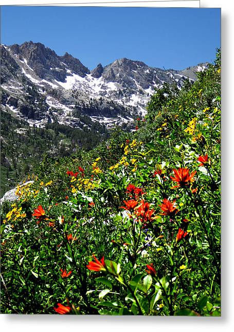 Ruby Mountain Wildflowers - Vertical Greeting Card