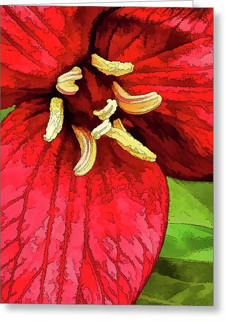 Ruby Red Trillium Greeting Card