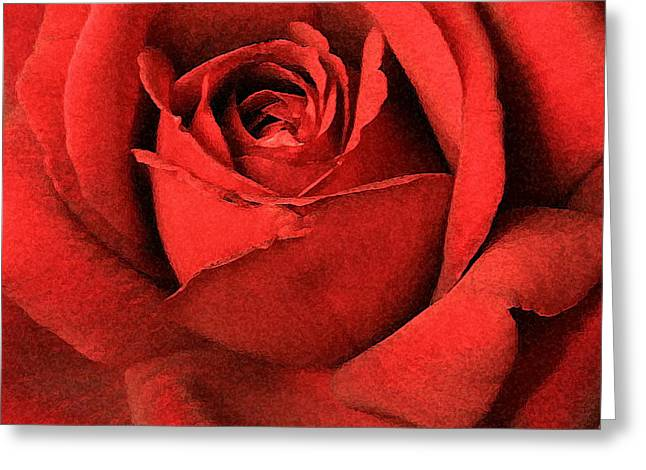 Ruby Rose Greeting Card by Marna Edwards Flavell