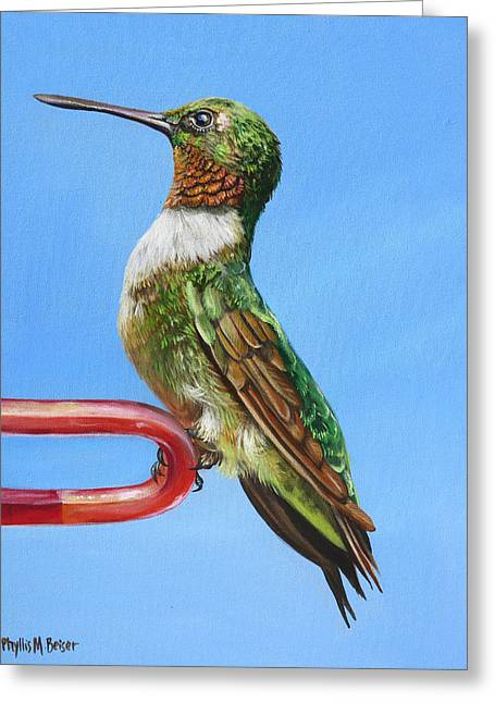 Ruby Throat Hummingbird  Greeting Card by Phyllis Beiser