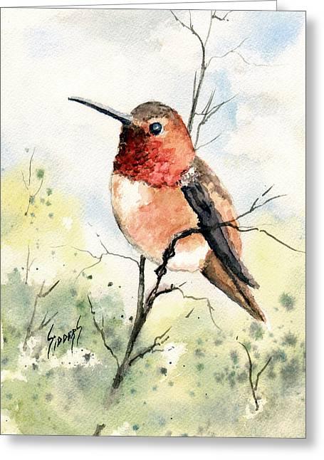 Rufous Hummingbird Greeting Card