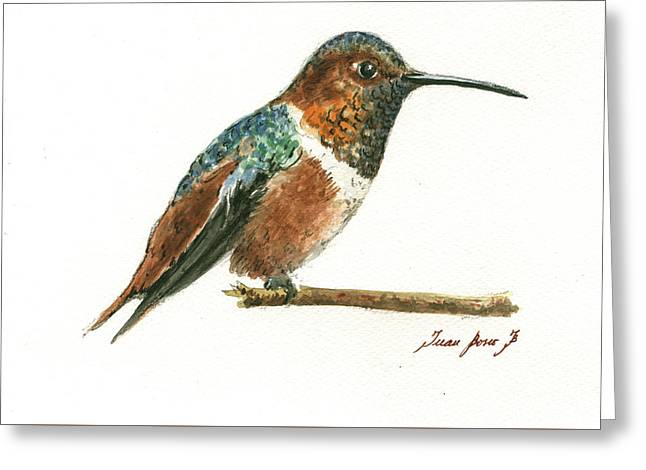 Rufous Hummingbird Watercolor Greeting Card