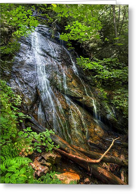 Rufus Morgan Falls Greeting Card by Debra and Dave Vanderlaan