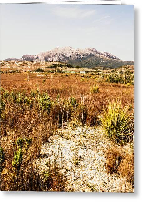 Rugged Australian Bushland Greeting Card