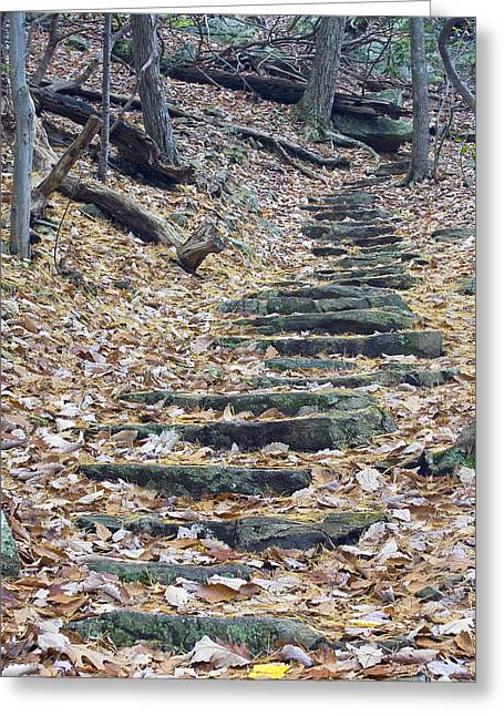 Greeting Card featuring the photograph Rugged Path by Alan Raasch