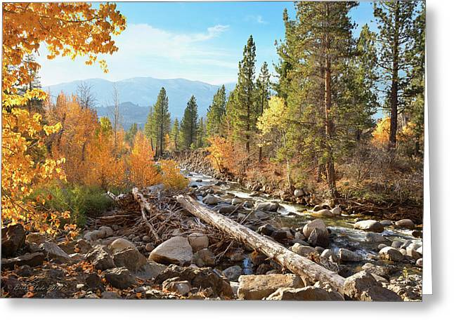 Rugged Sierra Beauty Greeting Card