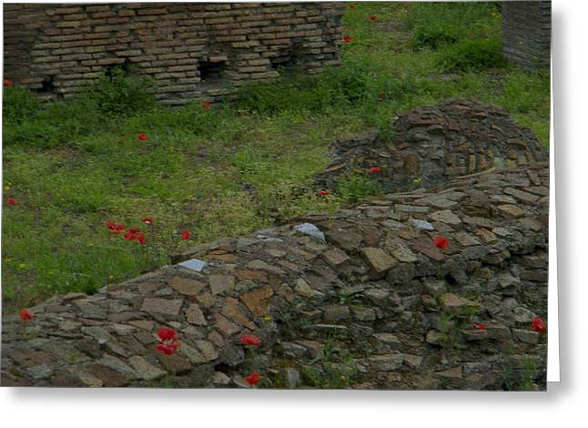 Greeting Card featuring the photograph Ruins In Rome by Manuela Constantin