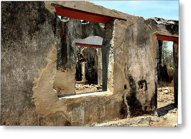 Ruins Of A Plantation House Greeting Card