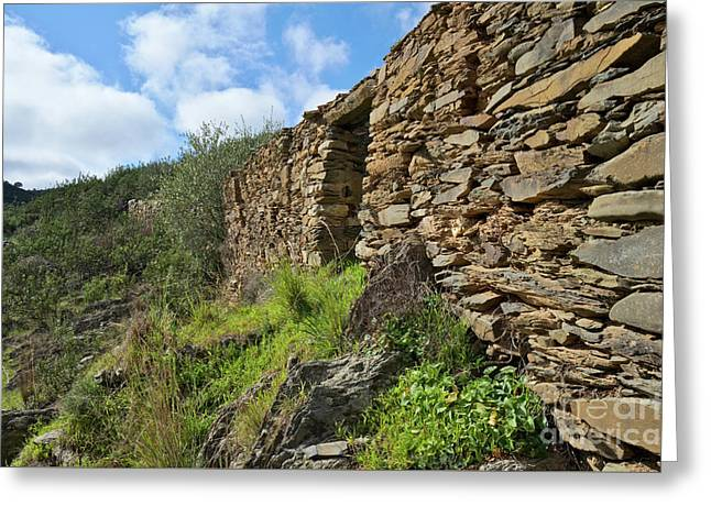 Ruins Of A Schist Cottage In Alentejo Greeting Card by Angelo DeVal