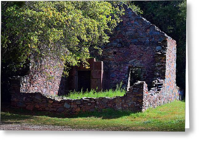 Ruins Of The Cherokee Gold Assayers Office Greeting Card by Frank Wilson