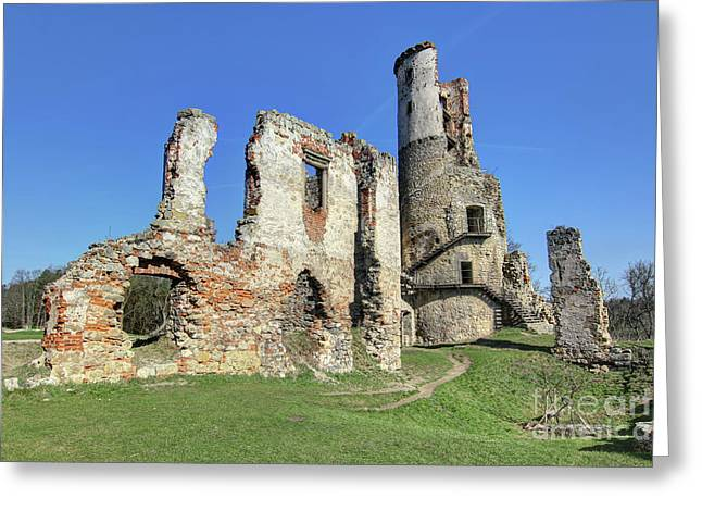 Greeting Card featuring the photograph Ruins Of Zviretice Castle by Michal Boubin