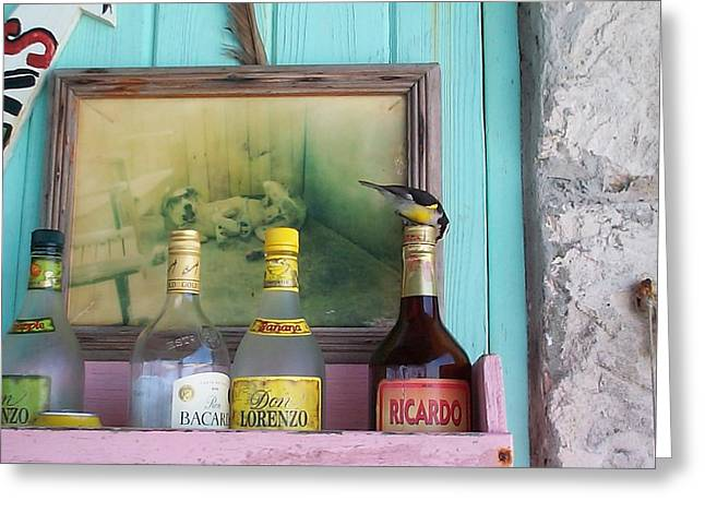 Greeting Card featuring the photograph Rum Shack Bananaquit by Mary-Lee Sanders
