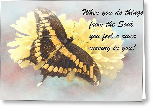Rumi Quote-9 Greeting Card