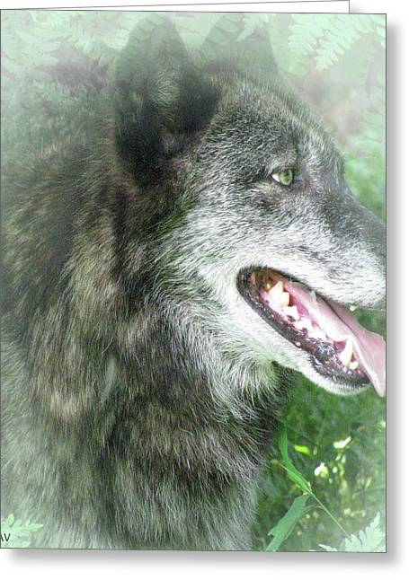 Wolf From The Forest Greeting Cards - Run In The Fern Greeting Card by Debra     Vatalaro