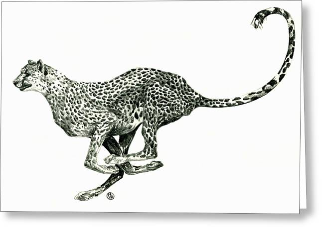 Running Cheetah Greeting Card