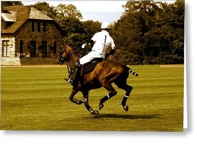 Running Polo Horse Greeting Card