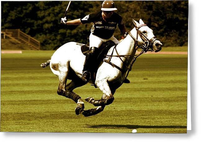 Running Polo Horses Greeting Card