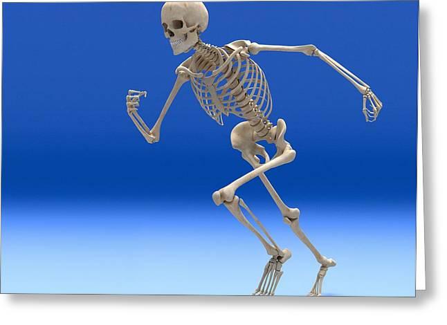 Biomechanics Greeting Cards - Running Skeleton, Artwork Greeting Card by Roger Harris