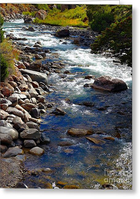 Greeting Card featuring the photograph Running Water by Robert Pearson