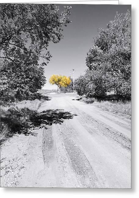 Rural Autumn Splash Greeting Card
