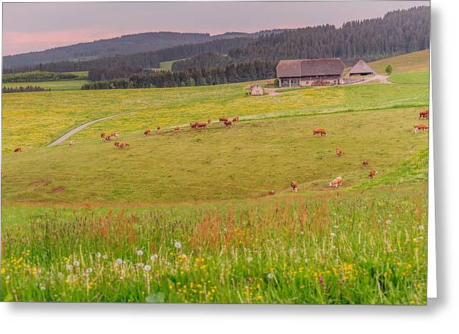 Rural Black Forest Landscape Greeting Card